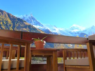 large light two bedroom apartment - Chamonix vacation rentals