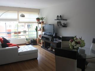 The Mirador Lima Apartament for Rent - Lima vacation rentals