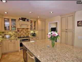 Amazing Lake Lanier Villa on Most Gorgeous Bay - Gainesville vacation rentals