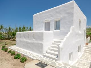 2 bedroom House with Internet Access in Agia Anna - Agia Anna vacation rentals