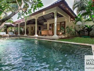 Nice Villa with Internet Access and Parking Space - Kuta vacation rentals