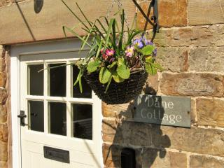 Romantic, magical , cottage retreat - Dane cottage,Wincle, Peak District - Wincle vacation rentals