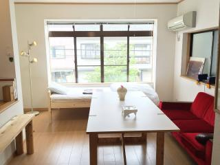 TOOLATE GUESTHOUSE TOYAMA whole rental apartment - Toyama vacation rentals