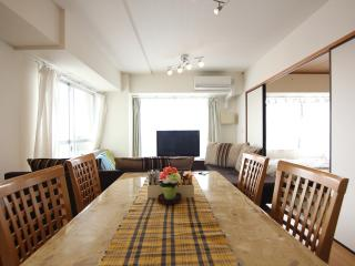 Penthouse view! Central Tokyo! 2BR! - Kita vacation rentals