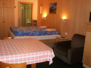 100C - Apartments Miara - Studio Apartment - Santa Cristina Valgardena vacation rentals