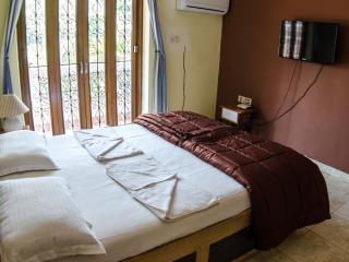 Beautiful villa 8 in Candolim - Candolim vacation rentals