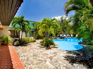 Villa Allamanda Estate 4 Bedroom SPECIAL OFFER - Beef Island vacation rentals