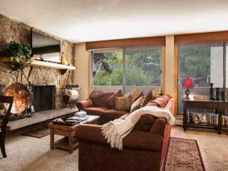 Cozy Mountain Condo~ Great Walkability~ Heart of Vail & Lionshead! Book Your Mountain Adventure Now! - Vail vacation rentals