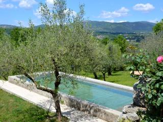 L'Ulivo - Triple apartment in Aia le Monache - Veroli vacation rentals