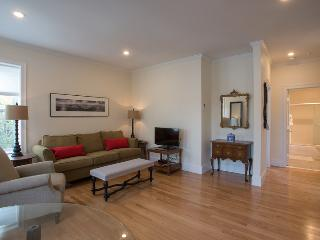 Sunny, modern, well appointed steps to Boston/Camb - Somerville vacation rentals
