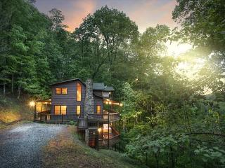 Beautiful Cabin in Blue Ridge with Internet Access, sleeps 7 - Blue Ridge vacation rentals