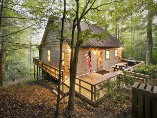 Cozy Cabin with Internet Access and Porch - Cherrylog vacation rentals