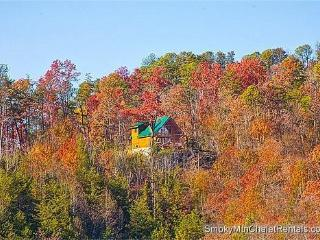 Serenity - Pigeon Forge vacation rentals