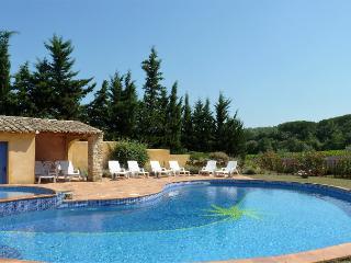 Mûrier, 4 personnes dans grand mas avec piscine - Suze-la-Rousse vacation rentals