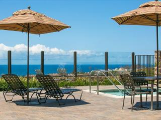 Beautiful Gated Community, Pool, Jacuzzi, Fireplace, Walk to Beach! - Dana Point vacation rentals
