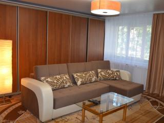 Cozy 1 bedroom Apartment in Irkutsk with Internet Access - Irkutsk vacation rentals