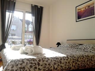 Old Town Modern Apartment - Novi Sad vacation rentals