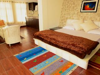 Beautiful 1 bedroom Villa in Bhimtal - Bhimtal vacation rentals