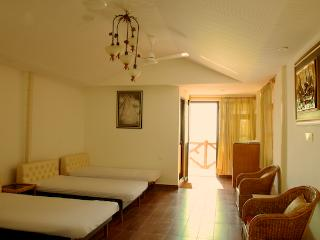 The Broadbill Suite - Bhimtal vacation rentals