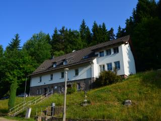 Ferienhaus Lütsche - App. Parterre groß - Frankenhain vacation rentals