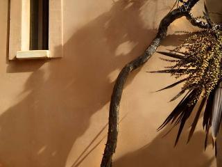 Gerani Crete , pristine setting - Chania vacation rentals