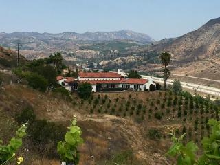Fallbrook Mediterranean Estate, Home & Guest House - Fallbrook vacation rentals