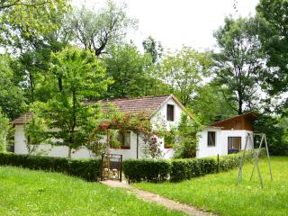 Perfect House with Internet Access and Wireless Internet - Bihac vacation rentals