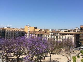 Apartment in perfect location! - Malaga vacation rentals
