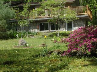 Furnished Studio Apartment - Waynesville vacation rentals