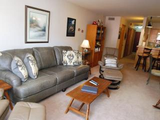 Ski Run Condominiums 203 - Walk to slopes, ski area views, spacious accommodations, pool! - Keystone vacation rentals