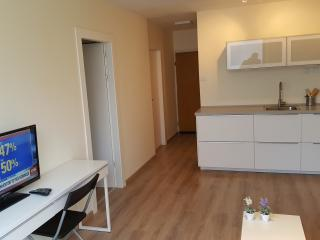 NEW SEABREEZE 3 - 2BR +LIVING ROOM - Tel Aviv vacation rentals