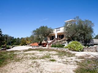 Villa-in-campaign-in-Salento-a-Parabita-in-area-panoramic-a-few-km-by-Gallipoli - Parabita vacation rentals