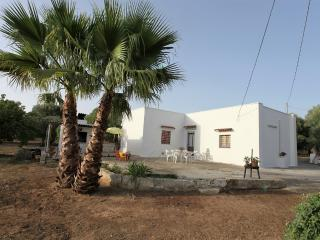 House-in-campaign-for-rent-by-holiday-in-Casarano-in-Salento-a-few-km-from-sea-CV100 - Casarano vacation rentals