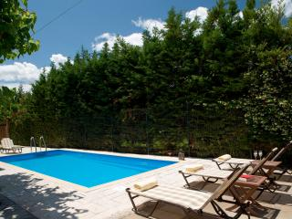SUPER OFFER - Villa Vassiliki with private pool - Kariotes vacation rentals
