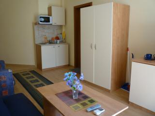 1 bedroom Apartment with Internet Access in Primorsko - Primorsko vacation rentals