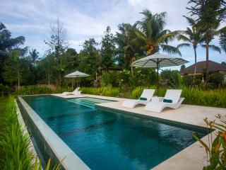 Vista, Garden Villa, 1bed Large Pool, Central Ubud - Ubud vacation rentals