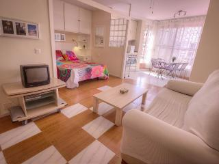 Charming studio in front of the beach - Encantador - Benalmadena vacation rentals