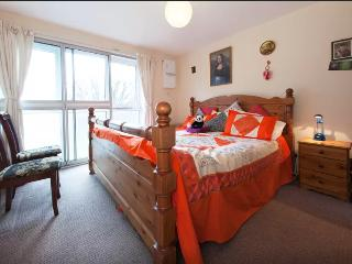 1 bedroom Apartment with Parking in Hounslow - Hounslow vacation rentals