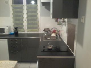 1 bedroom Condo with Parking in Sevres - Sevres vacation rentals