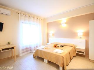 Arcadia B&B nuova apertura a Tropea - Camera 2 - Tropea vacation rentals