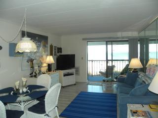 Beautiful Direct Ocean Front Condo - Ocean City vacation rentals