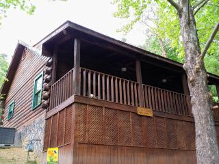 Cozy Quiet Clean Cabin in Sevierville, TN. - Sevierville vacation rentals