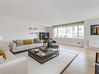 Bright and Spacious 3 Bed Apartment in  Chelsea - London vacation rentals