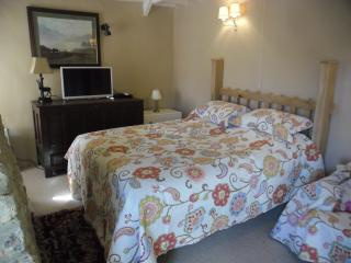Fyfett Farm Otter Bedroom B+B or Self catering - Chard vacation rentals