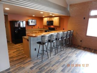 Nice Lodge with Internet Access and A/C - Old Forge vacation rentals
