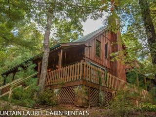 Bright 4 bedroom House in Blue Ridge - Blue Ridge vacation rentals