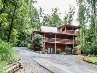 2 bedroom House with Internet Access in Blue Ridge - Blue Ridge vacation rentals