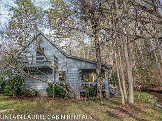DREAM BY THE STREAM-3BR/2BA, ROMANTIC RETREAT BY STREAM, CHARCOAL & GAS GRILLS, GAS LOG FIREPLACE, LARGE YARD, FIRE PIT, SCREENED PORCH, HOT TUB, WIFI, SPORTS PACKAGE ON TVS, HORSE SHOE PIT, CLOSE TO DOWNTOWN AND LAKE BLUE RIDGE! STARTING AT $155/NIGHT! - Blue Ridge vacation rentals
