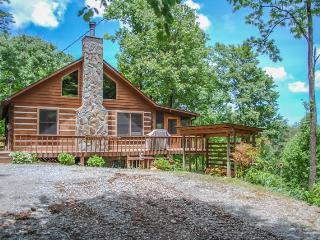 BARE-N-THE-WOODS- 2BR/2.5 BA- TRUE LOG CABIN WITH AWESOME VIEWS OF LAKE BLUE RIDGE AND THE BLUE RIDGE MOUNTAINS, WiFi, GAS AND CHARCOAL GRILLS, HOT TUB, SHUFFLEBOARD, POOL TABLE, PING PONG, FOOSBALL, AND A SCREENED PORCH! STARTING AT $145 A NIGHT! - Blue Ridge vacation rentals