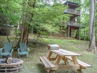 Beautiful House with Internet Access and DVD Player - Blue Ridge vacation rentals